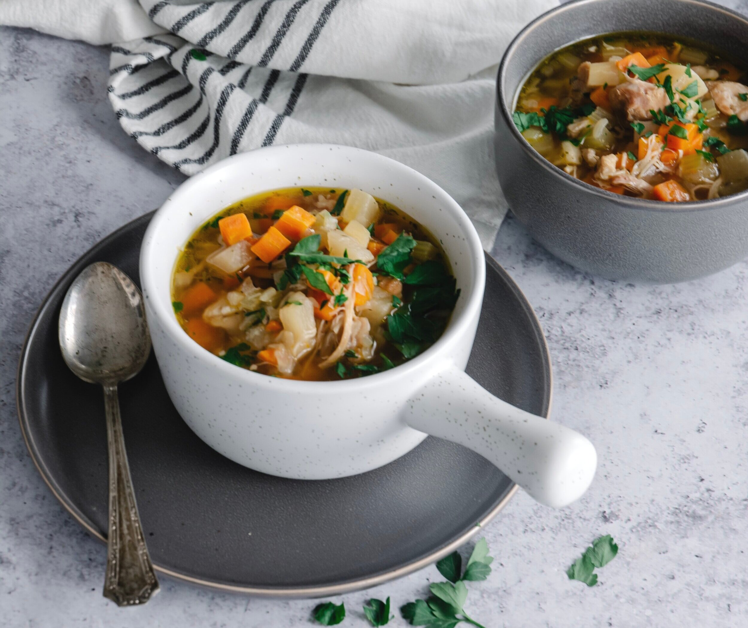 Instant Pot Chicken Vegetable Soup
