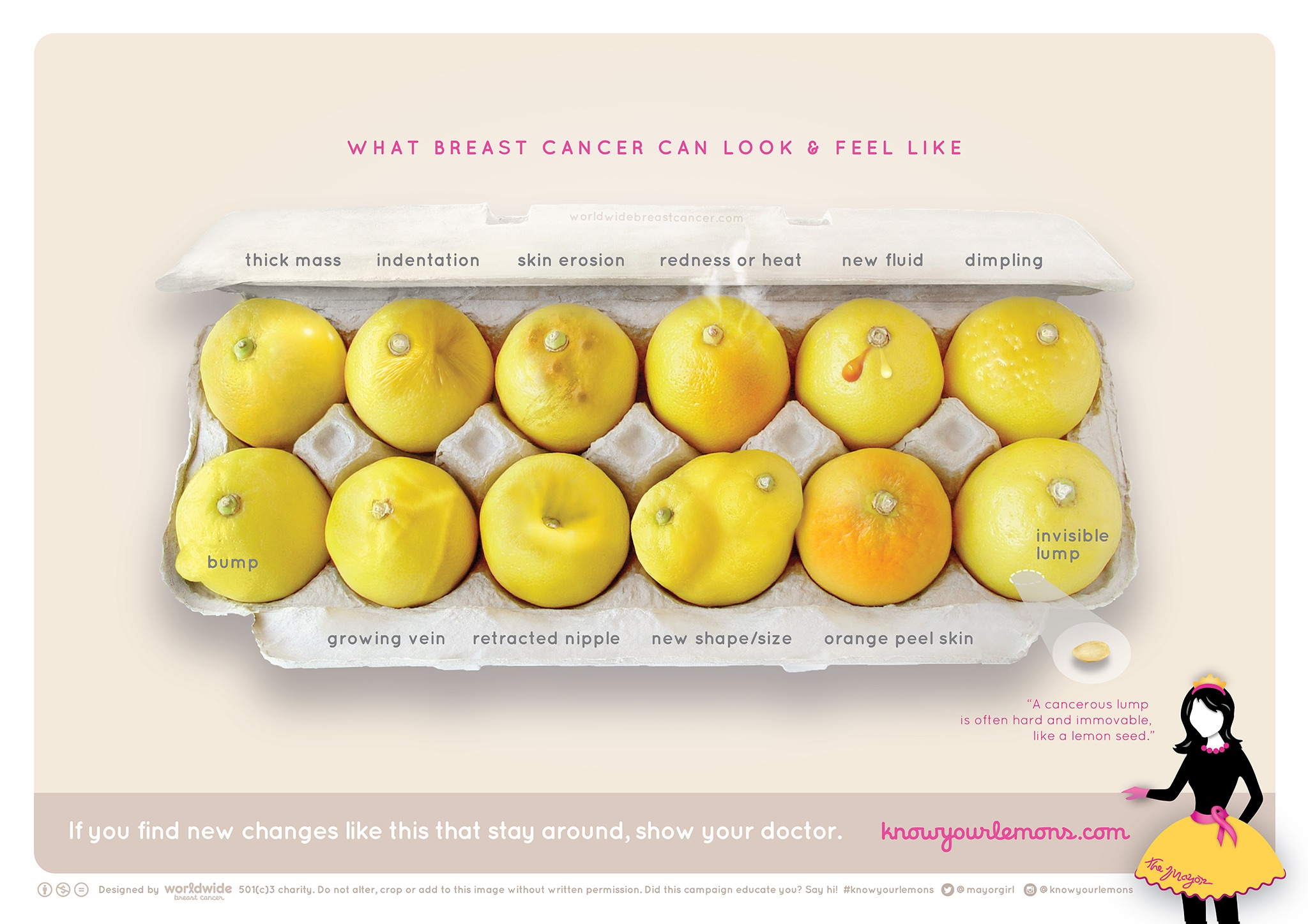 Image from WorldWideBreastCancer.com/research/ showing twelve lemons in an egg carton, with each one indicating a different way in which breast cancer can present itself
