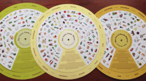 Image shows a set of local food wheels, as described in this post on CALMERme.com