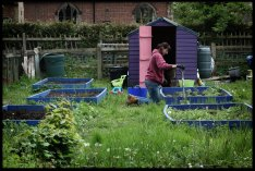 Image shows a woman being more active by weeding her garden, as described in this post on CALMERme.com