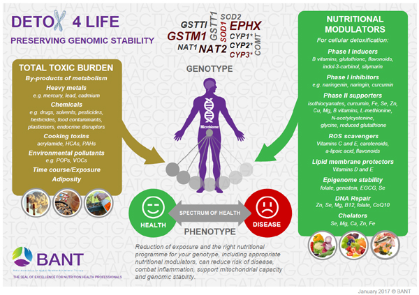 Image showing BANT detox 4 life poster from CALMERme.com