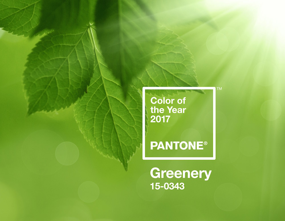 The image shows the pantone color of the year 2017, 15-0343, as discussed in this post on CALMERme.com