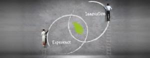 Experience / Innovation