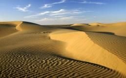 7-THAR DESERT