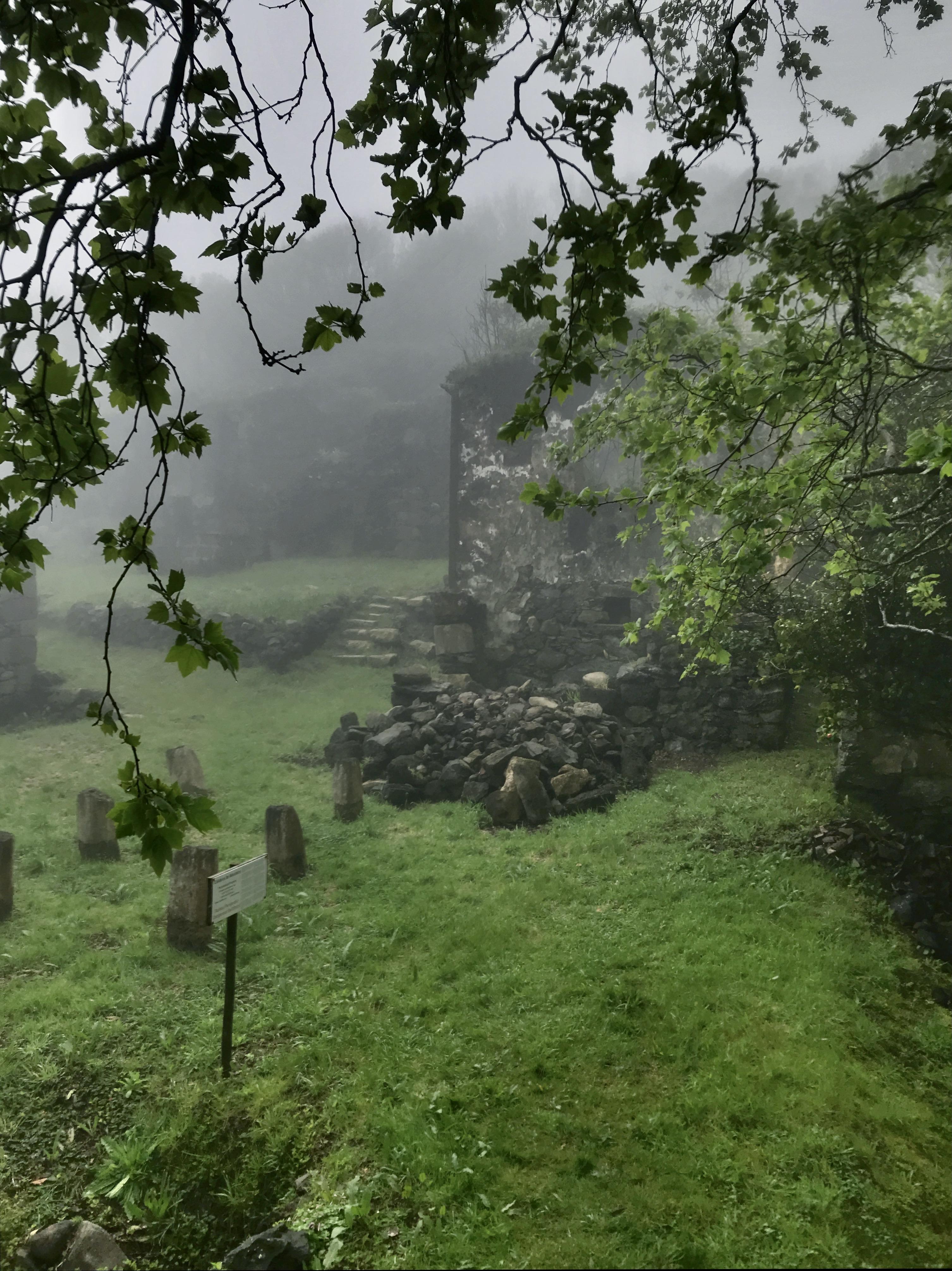 Casa das Figueiras under mist