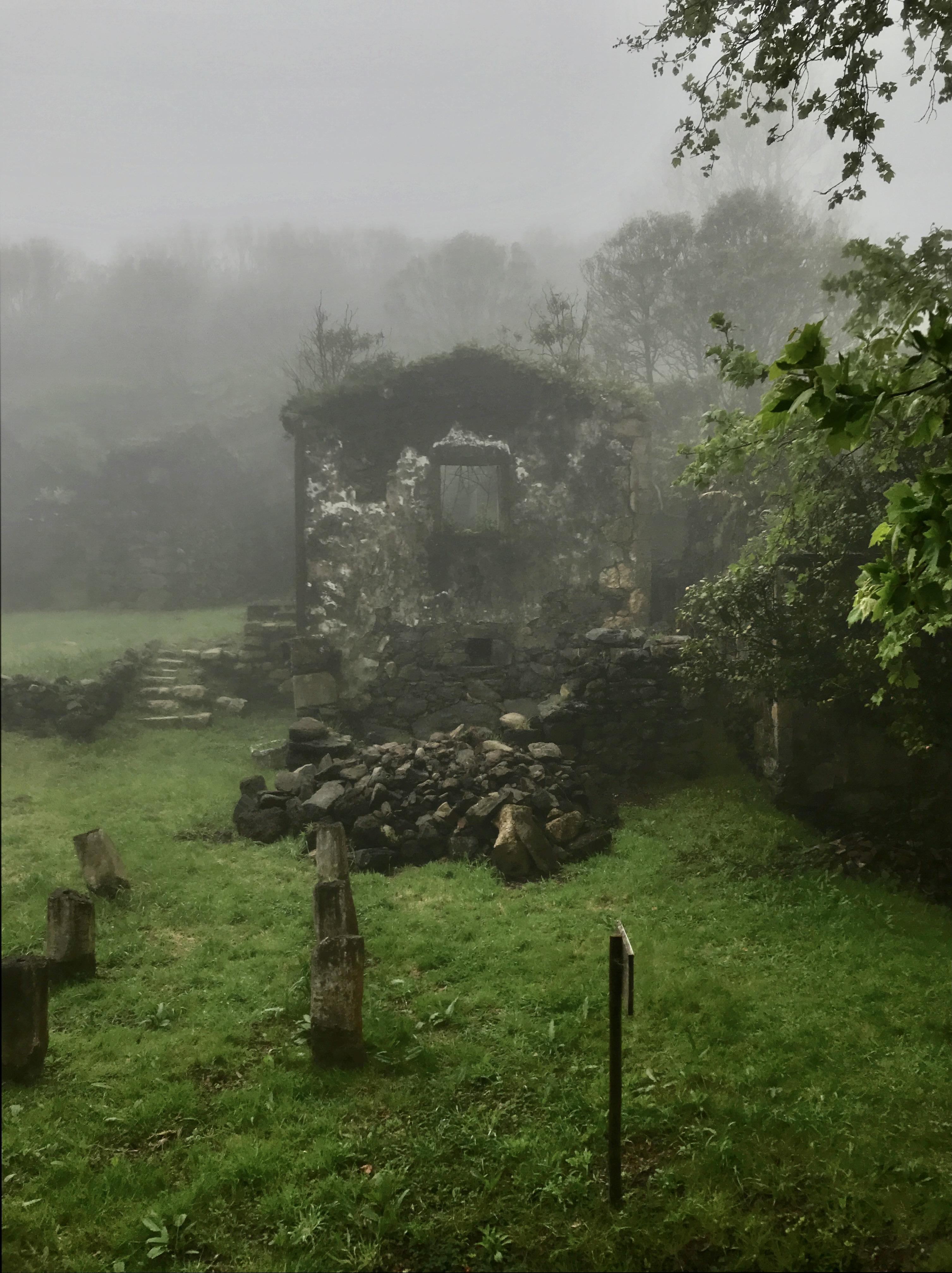 Casa das Figueiras sob o nevoeiro