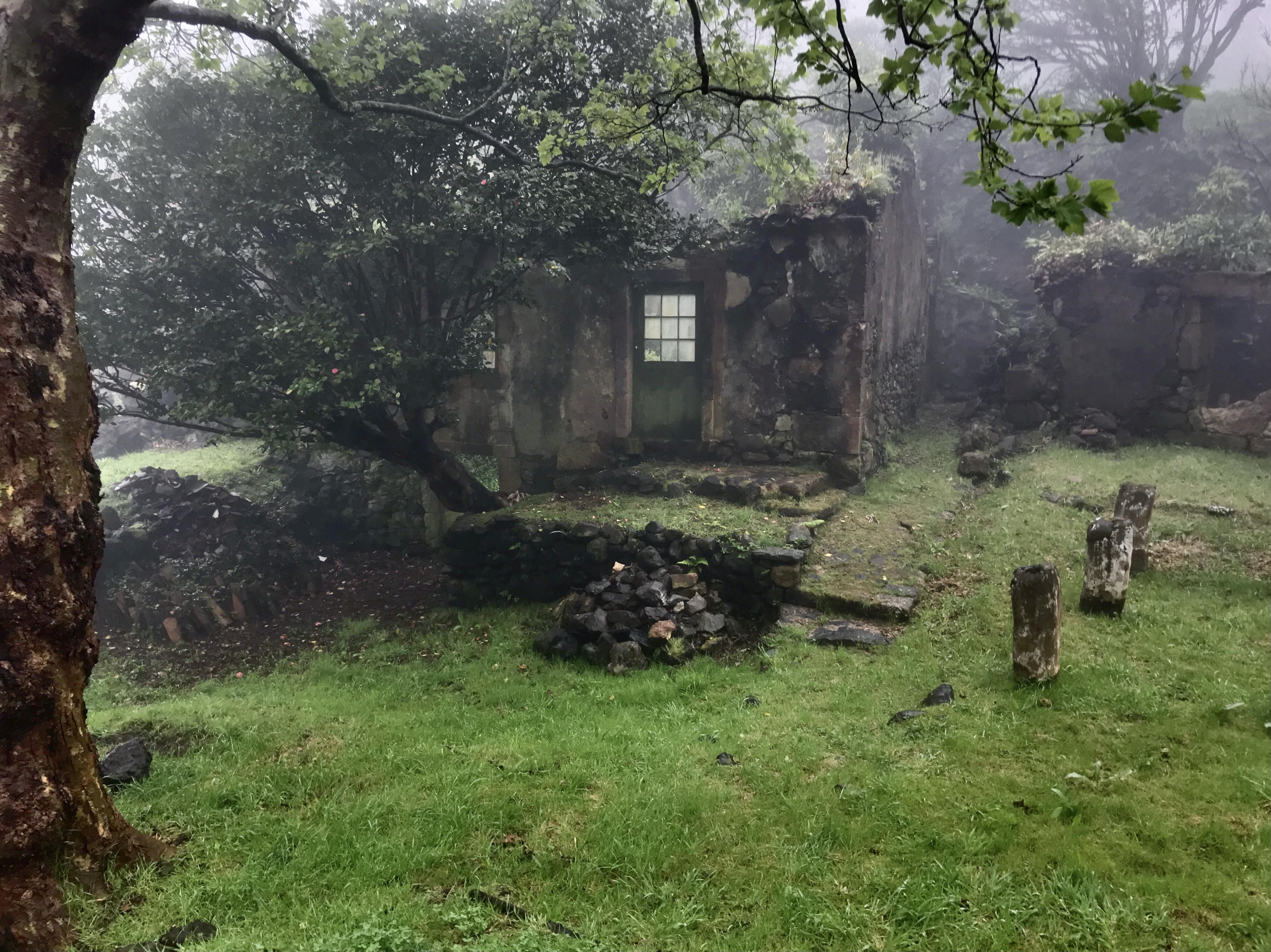 Casa das Flores sob o nevoeiro