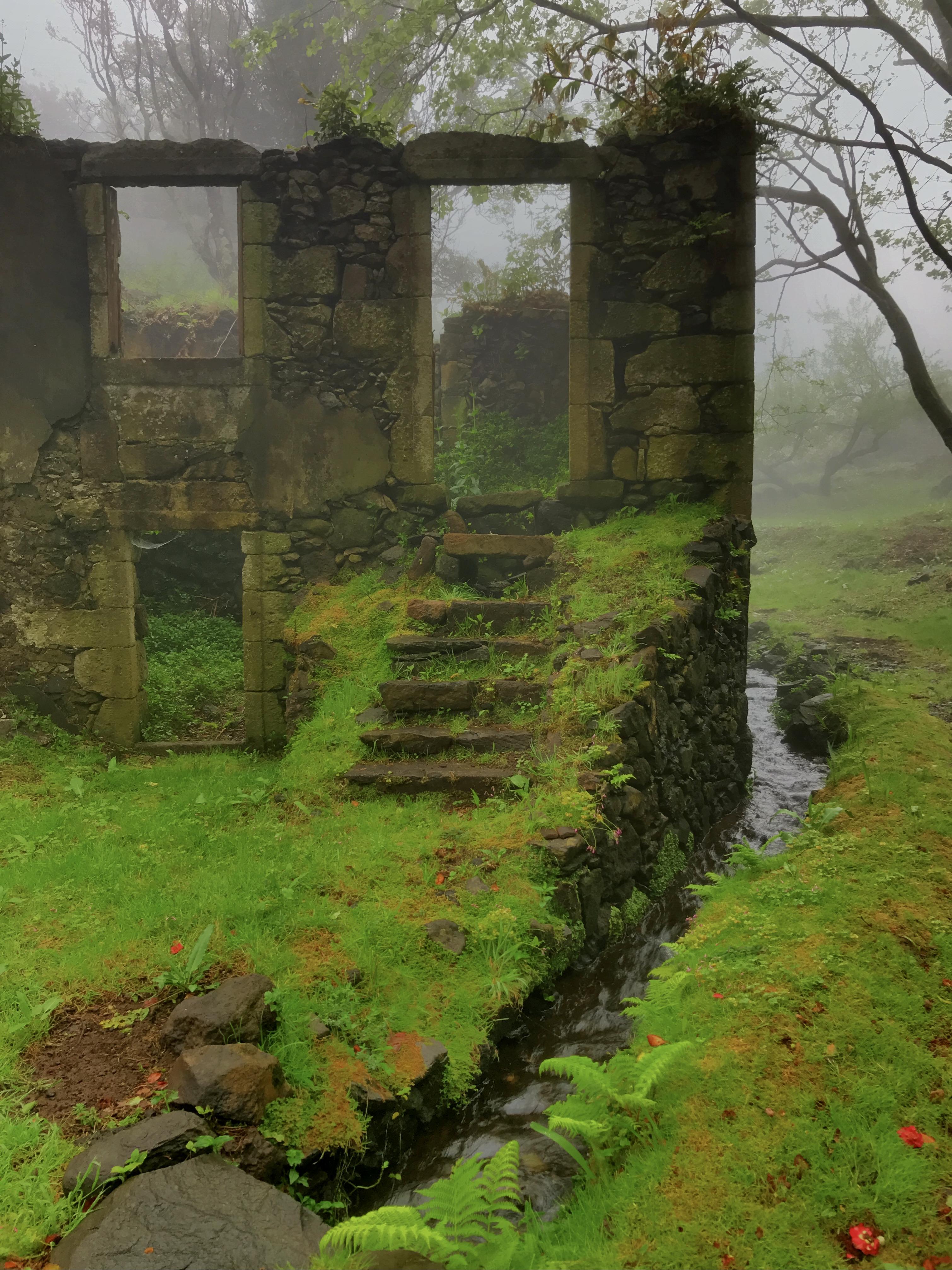 Casa do Verde sob o nevoeiro