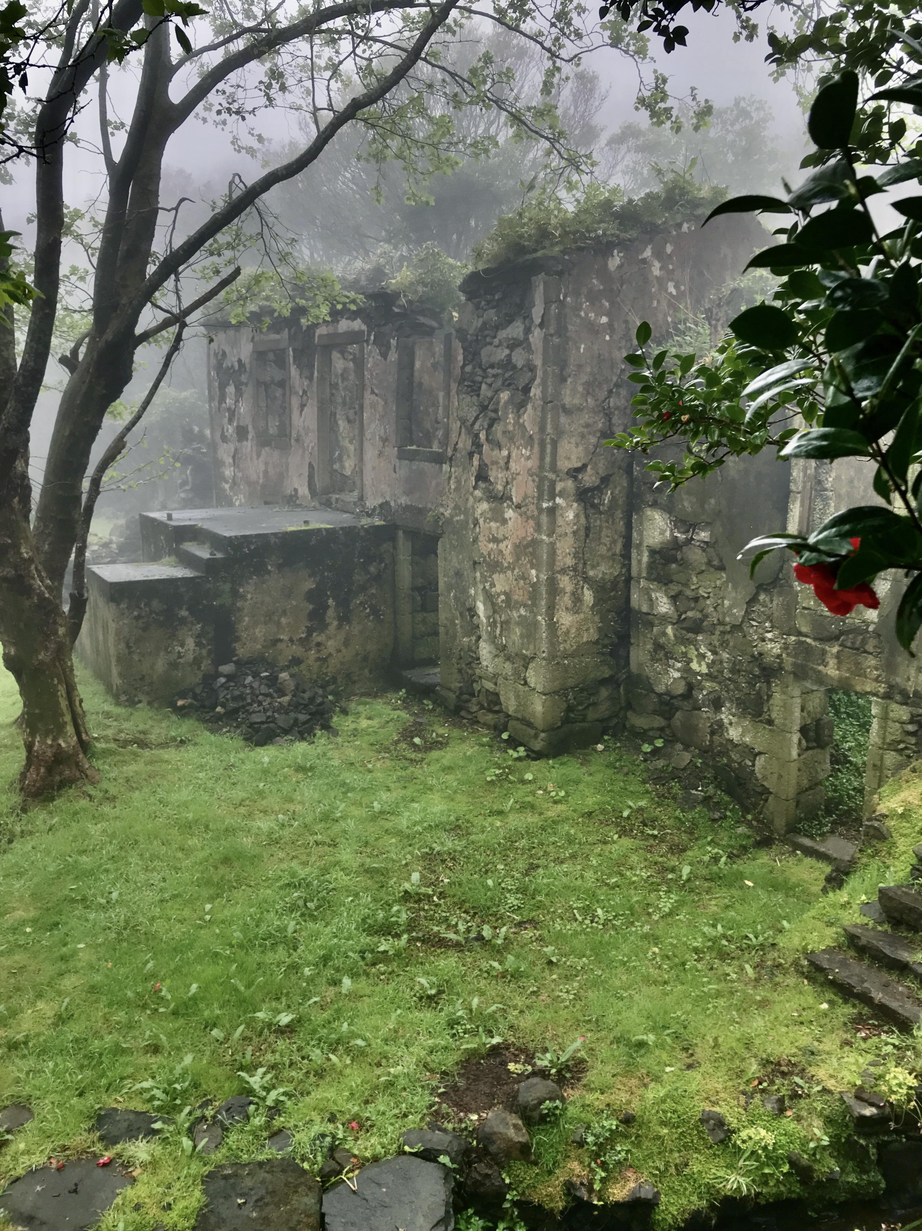 Casa dos Figos Maduros under mist