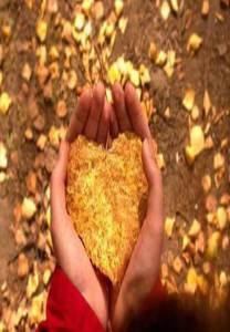 Preserva tus energías - recolecta el fruto de tus acciones
