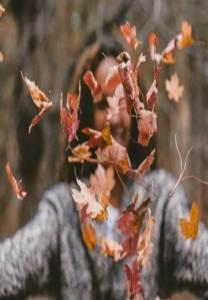 Soltar hojas secas