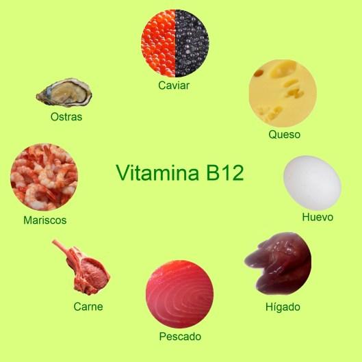 Alimentos que contienen vitamina B12. Anemia