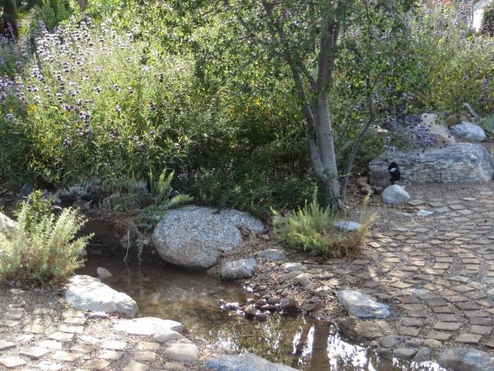 guide bioswale rainwater