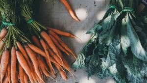 Two bunches of carrots and two bunches of kale on a wooden table.