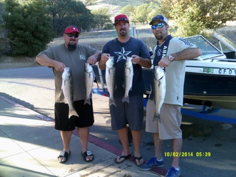 Lake Del Valle stripers (PHOTO BY LAKE DEL VALLE)