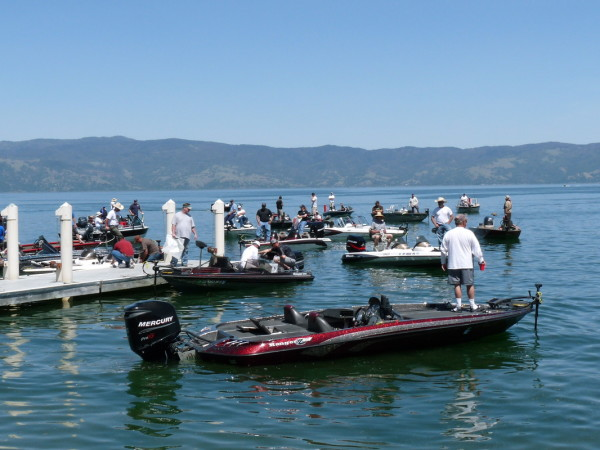 Sonoma sheriff 39 s bass tournament for Lake sonoma fishing report