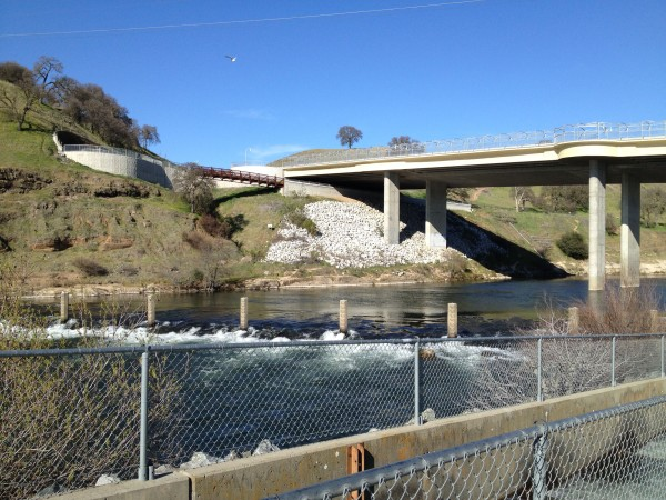 Hatchery concerns in california for Sacbee fishing report