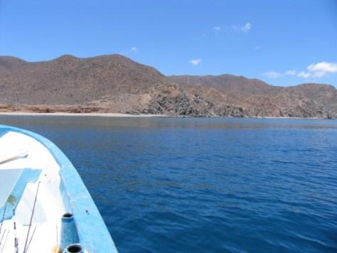 Baja 4