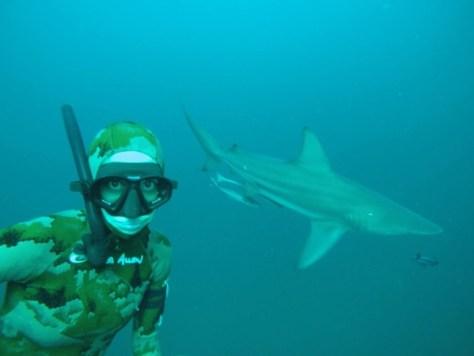 Spearfishing 6