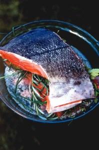 Salmon over mixture