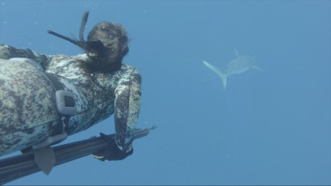 Hawaii legend Kimi Werner trailing a shark underwater.