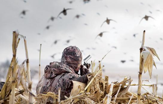 duck hunting Archives -