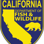 CDFW Invites Public To Ocean Salmon Meeting