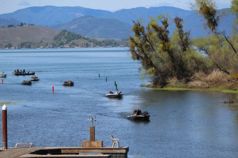 Clear Lake State Park was the top California family boating spot per a national Top 100 list. Photo by Brian Lull