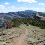 Modoc National Forest Hosting Wild Horse Territory Management Plan Meeting