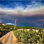 Commerce Department Intervenes As Fires Burn