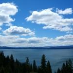 Lake Almanor Receiving 50,000 Trout