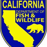 CDFW To Funs Multiple Restoration Projects Throughout The State