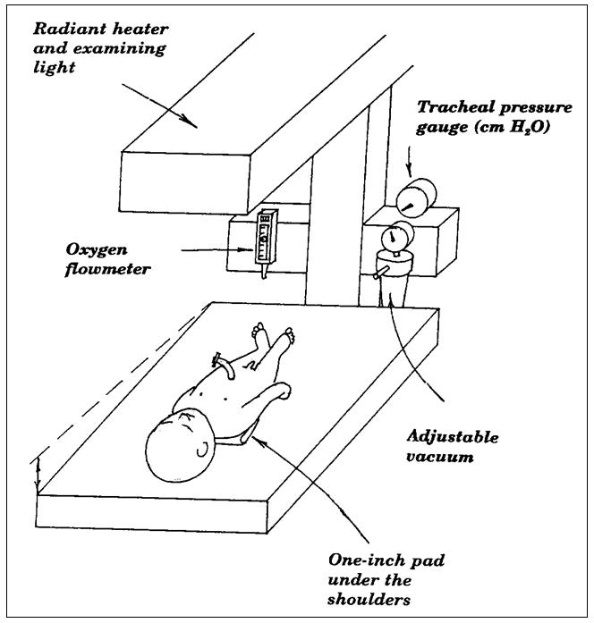 CALS Manual