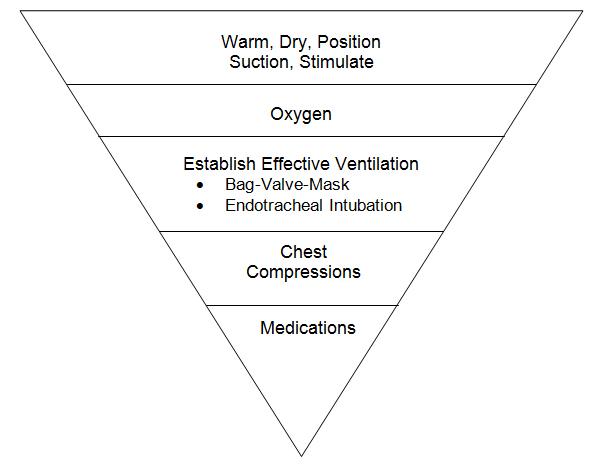 Neonatal 5 Inverted Triangle Apgar Score Portal