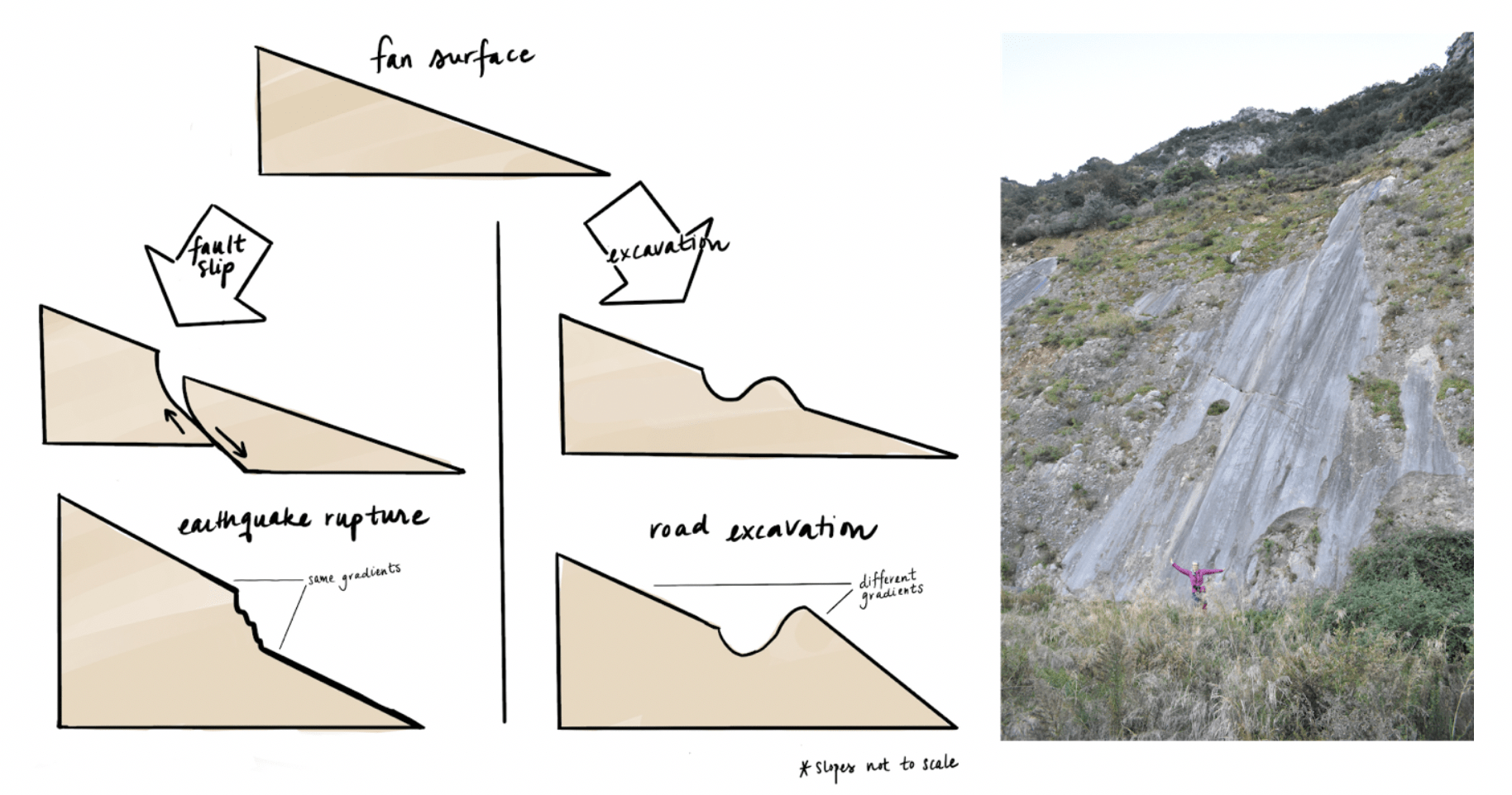 How Earthquakes Shape our Landscape