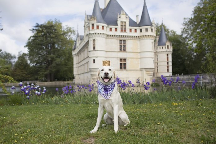 chateau d'azay du rideau