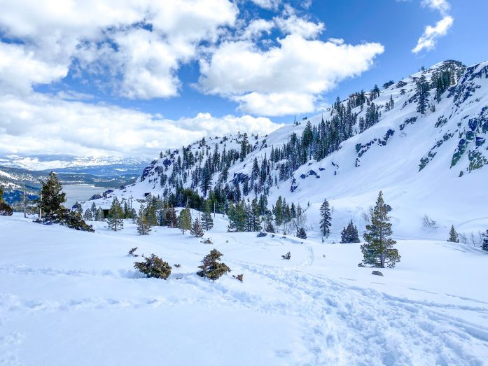 dog friendly trail in lake tahoe to mount judah