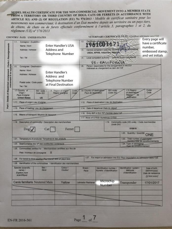 Sample France Health Certificate