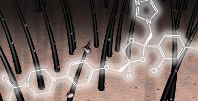 ketoconazolo antimicotico antiandrogeno calvizie