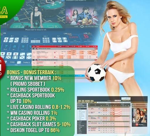 オンラインカジノで貰えるボーナスの種類と付帯条件