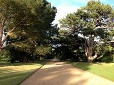 Botanic Tour3