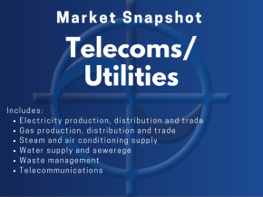 CAE Market Snapshot Telecoms / Utilities Includes: • Electricity production, distribution and trade • Gas production, distribution and trade • Steam and air conditioning supply • Water supply and sewerage • Waste management • Telecommunications