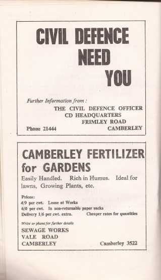 Camberley Carnival 7