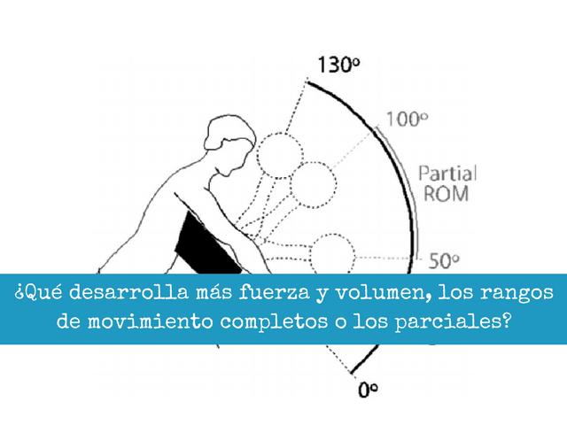 Que desarrolla mas fuerza y volumen los rangos de movimiento completos o los parciales