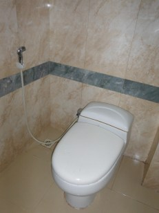 bathroom-hosing