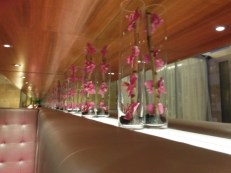 orchid-wall