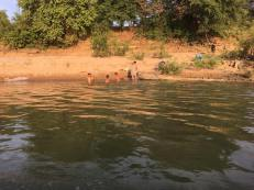 18-jan-to-homestay-river-views