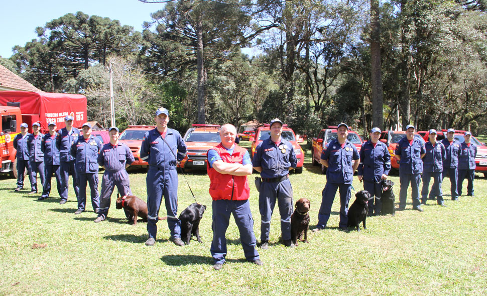 Cães de busca e salvamento dos Bombeiros de Santa Catarina fazem serviço noturno e são referência