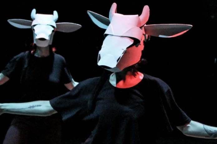 Espetáculo teatral When Vacas Fly estreia no fim de semana 2