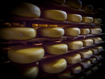 Meyers Cheeses